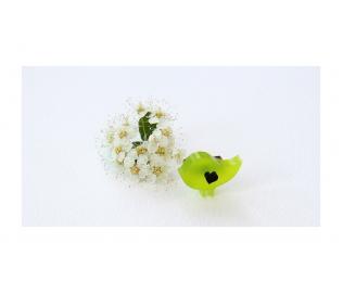 """Segė """"Mažasis paukštukas"""" žalia spalva"""