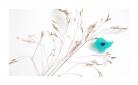 """Segė """"Mažasis paukštukas"""" žydra spalva"""